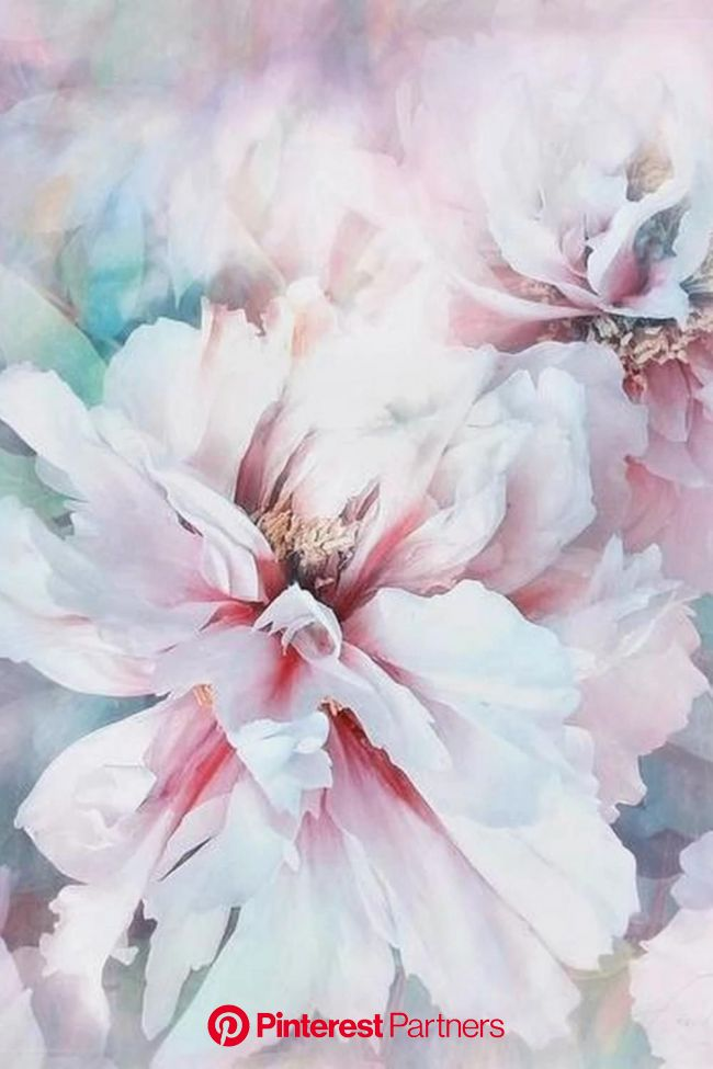 peony love, Wandbilder und Poster der besonderen Fotokunst [Video] | Peonies art print, Flower art, Peony art