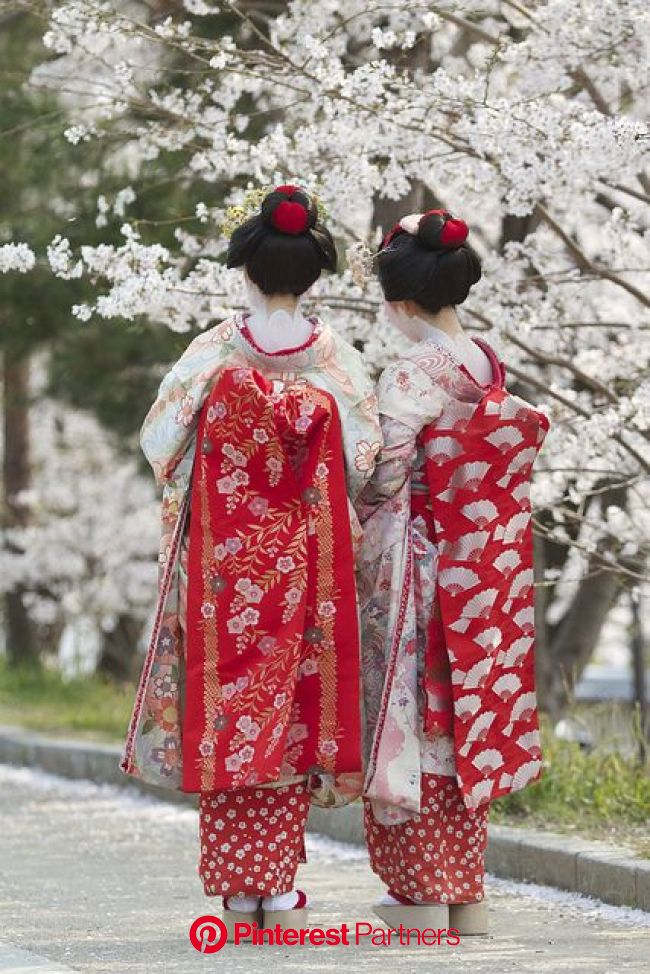 An entry from Emilialua   日本の芸者, 舞妓, 芸妓