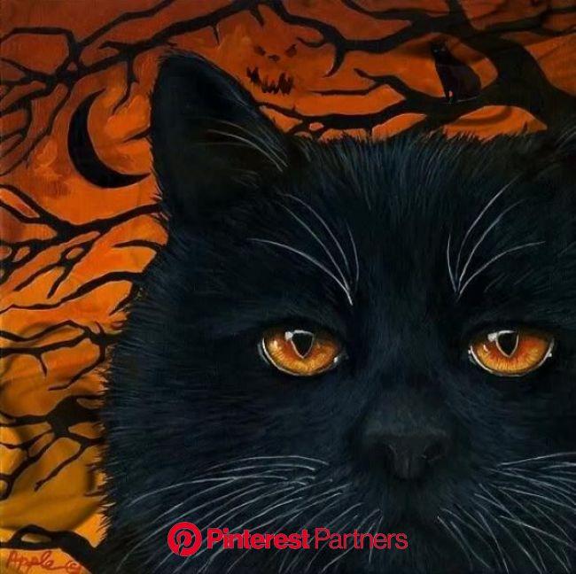Happy Halloween ???? [Video] | Black cat painting, Black cat art, Cat art