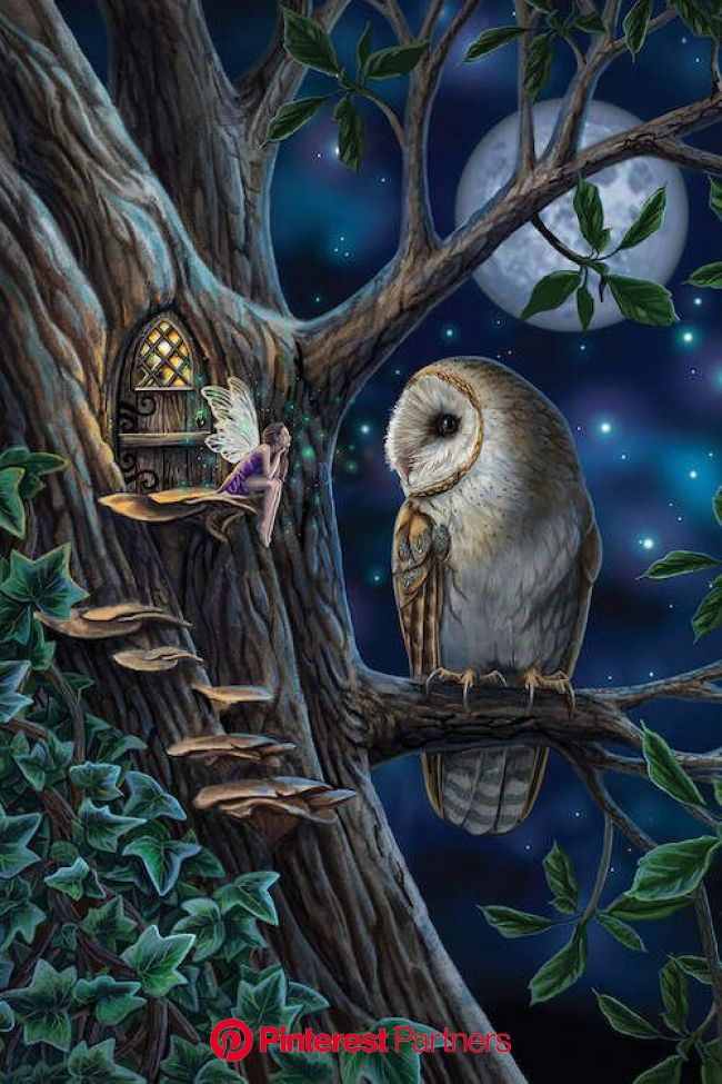 Fairy Tales Canvas Art Print by Lisa Parker | iCanvas | Faery art, Fairytale art, Fairy artwork