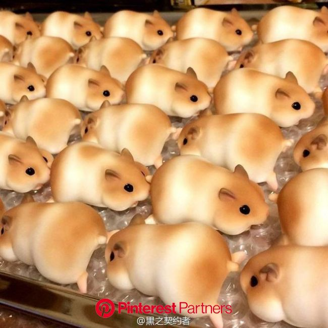 ꕥ carmelia fairy ꕥ on Twitter in 2021 | Cute baking, Food humor, Cute food