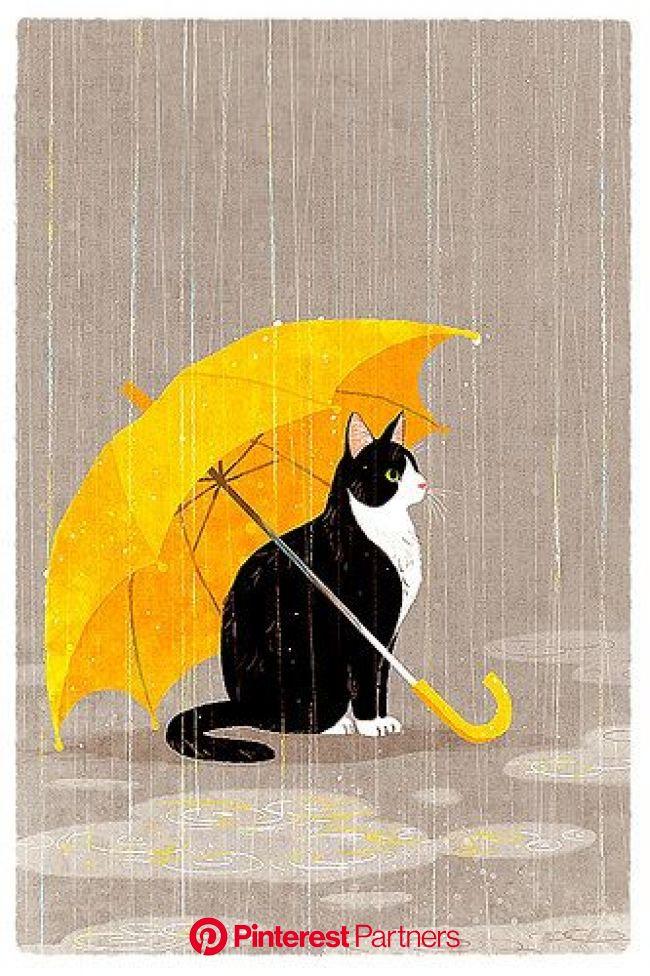 Untitled | Cats illustration, Cat art, Cute cats