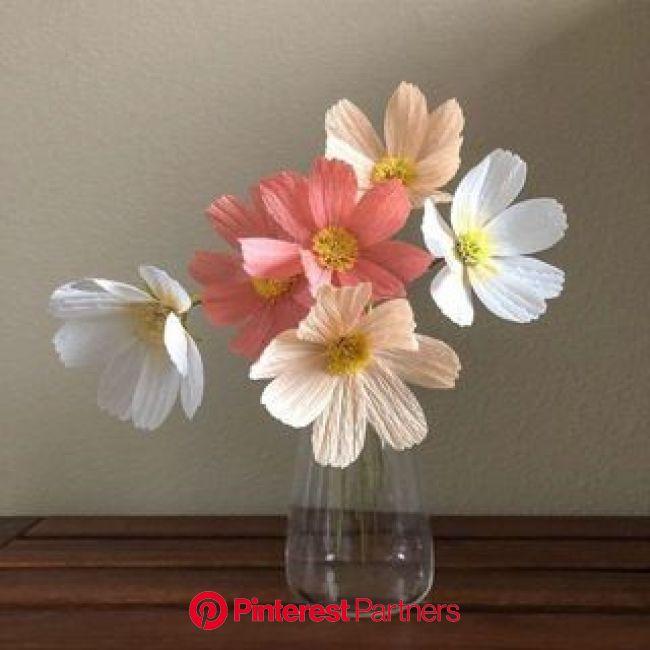 Pin by Lavinia Maria on iubitilee in 2021   Paper flowers, Peach flowers, Flower aesthetic