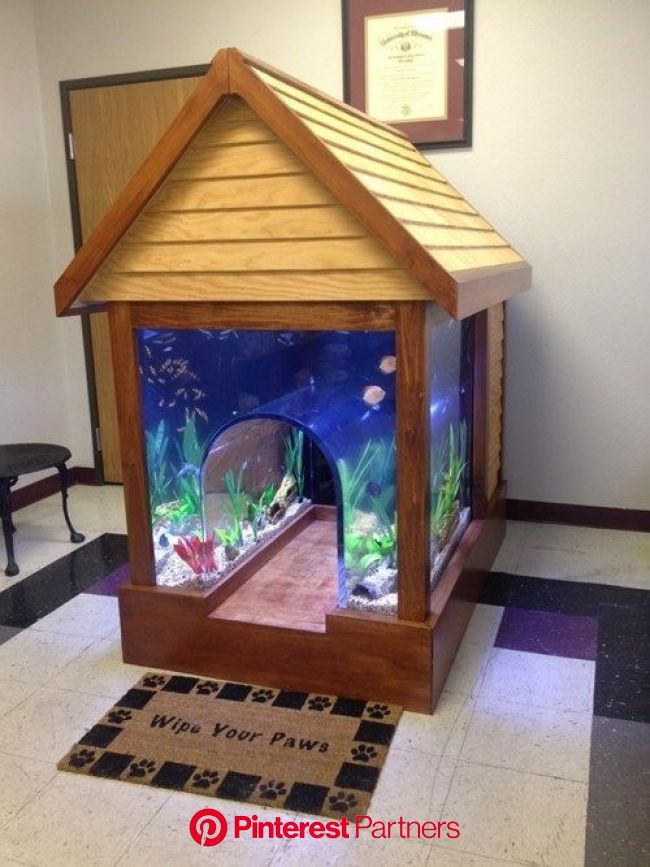 They Need Human-Sized Aquariums Like This! | Cool dog houses, Cool fish tanks, Dog house