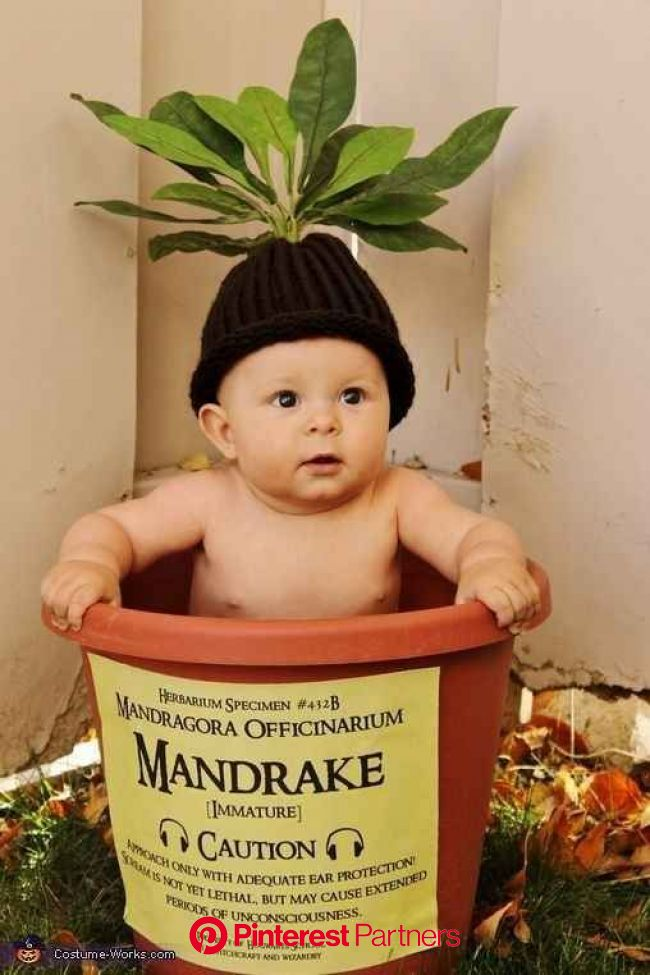 """19 Babies Who Made """"Harry Potter"""" Magic At Their First Photoshoots 