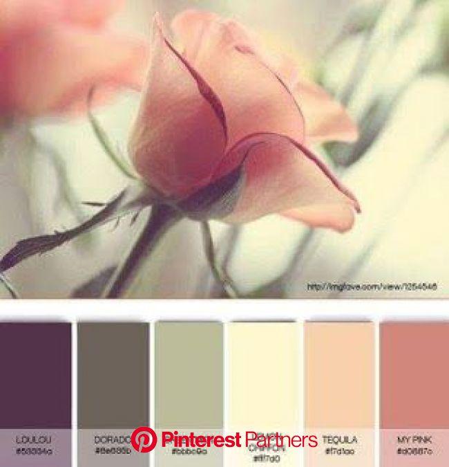 Digiscrap Angelhaze | Nuancier couleur, Couleur peinture, Palette de couleurs