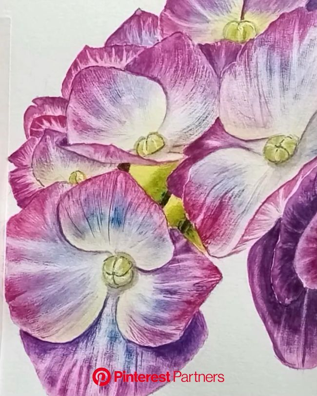 Watercolor painting flowers│Watercolor flower realistic│Watercolor painting techniques [Video] in 2021 | Watercolor flowers, Watercolor paintings, Flo