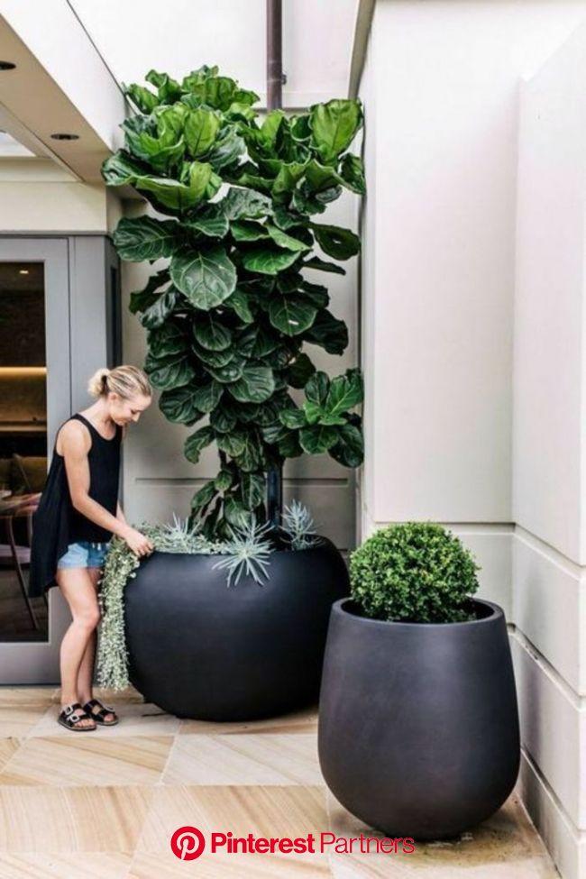 ▷ 1001 + Idée déco terrasse pour votre espace extérieur + des balcons fleuris pour la belle saison | Décoration jardin terrasse, Decoration jardin, Am
