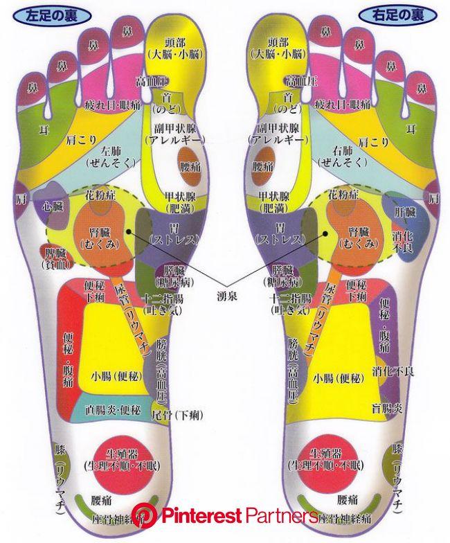 ★足つぼ・身体のつぼ研究所★OPEN|足部反射区~画像付き | 健康, 足つぼ, ツボ