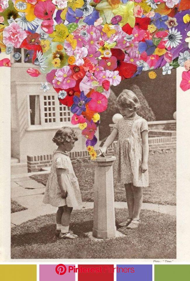 Os Achados por Bia Perotti | Colagem de flores, Arte de colagem, Produção de arte