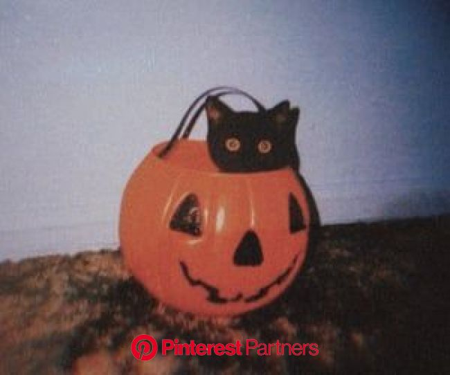 photography, tumblr и aesthetic картинка в We Heart It | Vintage halloween, Halloween art, Spooky halloween