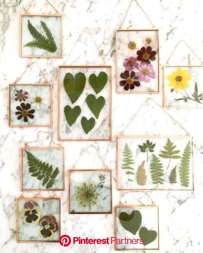 Framed Pressed Leaves & Florals | Pressed flower art, Hanging flower wall, Flower art