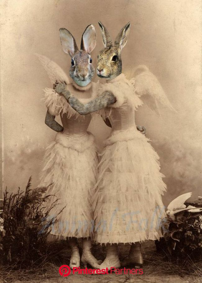 Pin by Cindy Leaf on Old photos in 2021 | Animal portraits art, Rabbit art, Bunny art